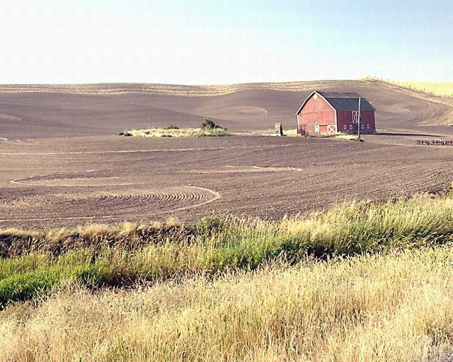 photo of barn with red farmhouse